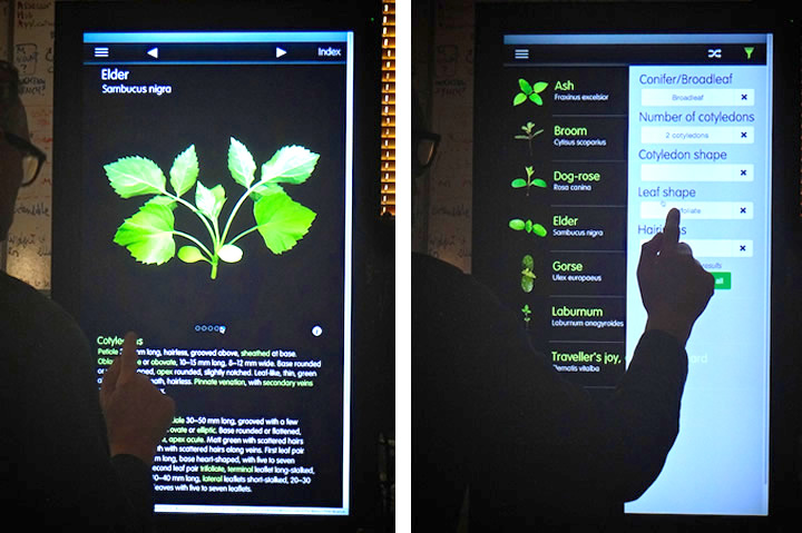 seedling kiosk touchscreen